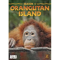 Orangutan Island: Season 1