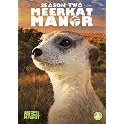 Meerkat Manor: Season Two