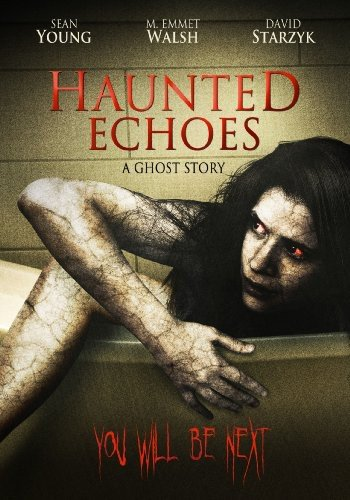 Haunted Echoes: Ghost Story