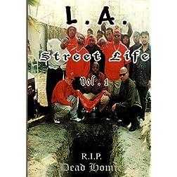 L.A. Street Life vol.1 R.I.P Dead Homiez