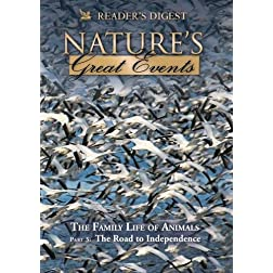 Nature's Great Events: The Family Life of Animals: The Road to Independence
