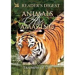 Animals Are Amazing: Triumph of Life