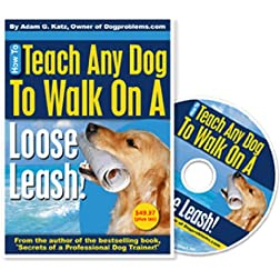 How To Teach Any Dog To Walk On A Loose Leash