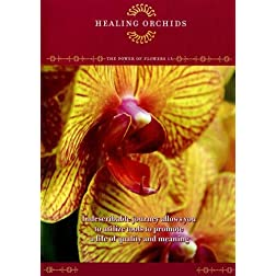 The Power of Flowers 13: Healing Orchids