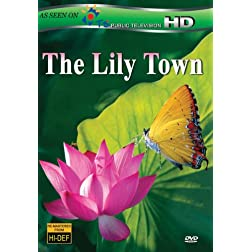 The Lily Town