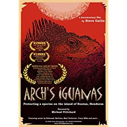 Arch's Iguanas