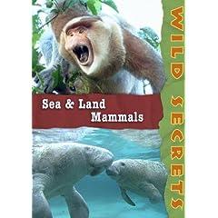 Wild Secrets: Sea and Land Mammals (Institutions)