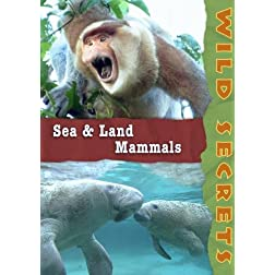 Wild Secrets: Sea and Land Mammals (Home Use)