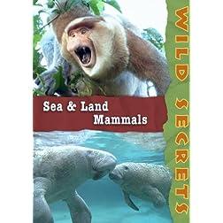 Wild Secrets: Sea and Land Mammals (Home Use)