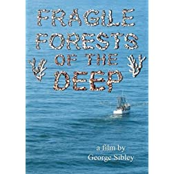Fragile Forests of the Deep