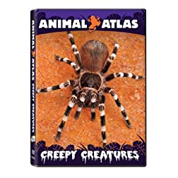 Animal Atlas: Creepy Creatures