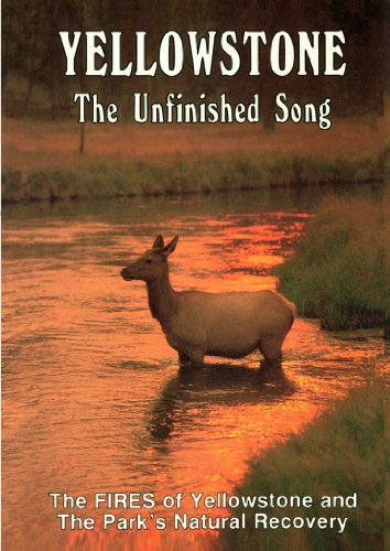 Yellowstone Unfinished Song