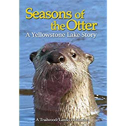 Seasons of the Otter