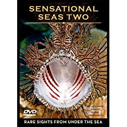 Sensational Seas Two