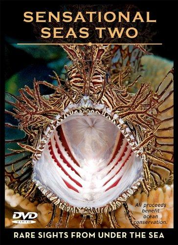 Sensational Seas Two