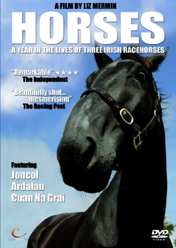 Horses - A Year In The Lives Of Three Irish Racehorses