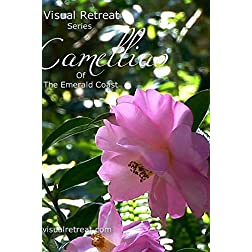 Camellias Of The Emerald Coast - Visual Retreat