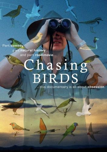 Chasing Birds