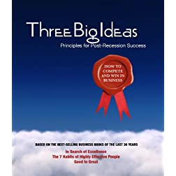 Three Big Ideas: Principles for Post-Recession Success