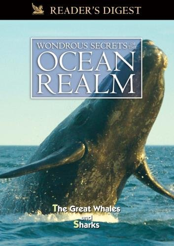 Wondrous Secrets of the Ocean Realm: The Great Whales & Sharks