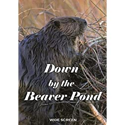 """Down by the Beaver Pond"""