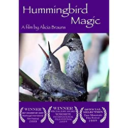 Hummingbird Magic