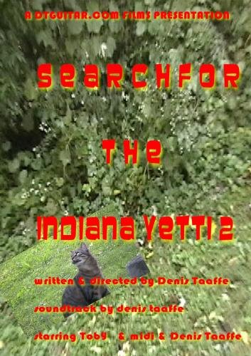 Search for the Indiana yetti 2