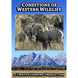 Conditions of Western Wildlife