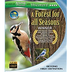 Wild Asia : A Forest for All Seasns (Blu-ray)
