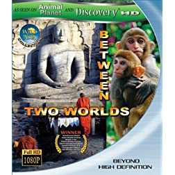 Wild Asia: Between Two Worlds [Blu-ray]