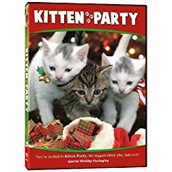 Kitten Party Holiday