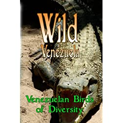 Wild Venezuela Venezuelan Birds of Diversity