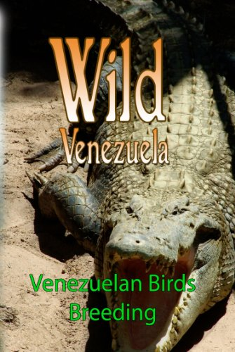 Wild Venezuela Venezuelan Birds Breeding