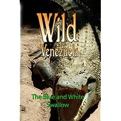 Wild Venezuela The Blue and White Swallow