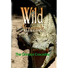 Wild Venezuela The Orinoco Crocodile