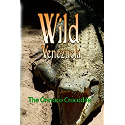 Wild Venezuela The Orinoco Crocodile