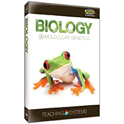 Teaching Systems Biology Module 3: Molecular Genetics