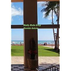 Maddy Studios Honolulu Autumn