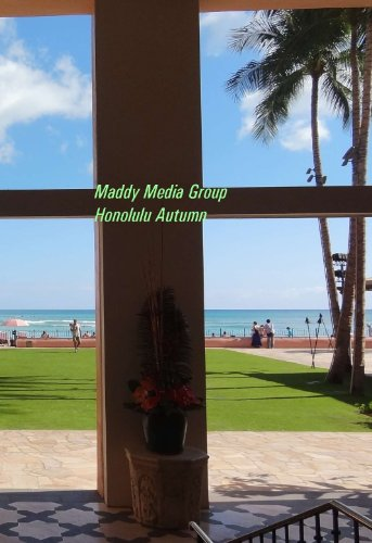 Maddy Studios Honolulu Autumn