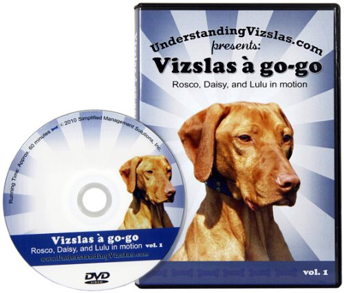 Vizslas a go-go: Rosco, Daisy, and Lulu in motion vol. 1