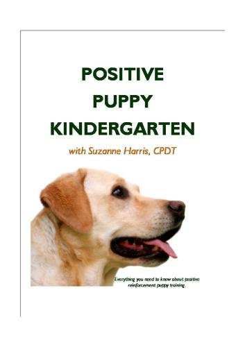 Positive Puppy Kindergarten