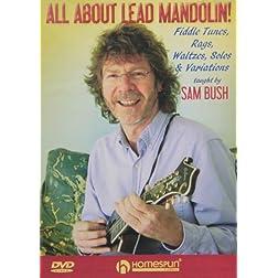 All About Rhythm & Lead Mandolin