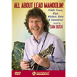 All About Lead Mandolin!