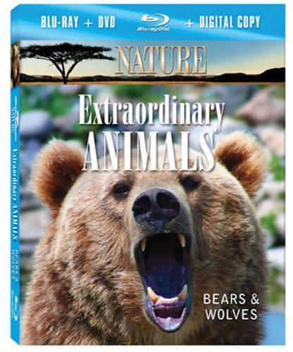 NATURE: Extraordinary Animals: Bears & Wolves (Blu-ray Combo Pack)
