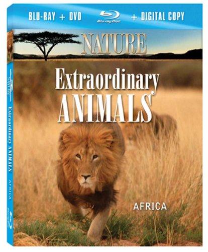 NATURE: Extraordinary Animals: Africa (Blu-ray Combo Pack)