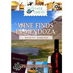 Culinary Travels Wine Finds in Mendoza