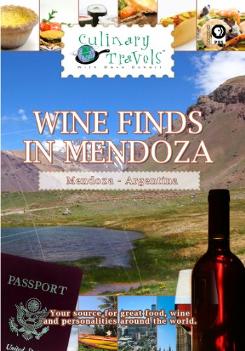 Culinary Travels Wine Finds in Mendoza