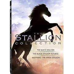 Stallion Collection