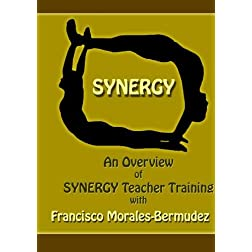 Synergy Teacher Training: An Overview with Francisco Morales-Bermudez