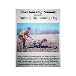 ZEUS GUN DOG TRAINING  ---  Training The Pointing Dog